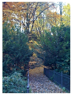 Der Viktoriapark in Kreuzberg, Berlin. Quelle: beauty24, Benjamin Krauss