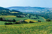 Die abwechslungsreiche Landschaft lädt zum Wandern ein. Quelle: Hotel in Schwarzenberg / Erzgebirge / beauty24 GmbH