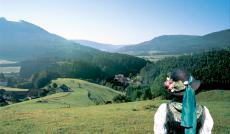 Im Schwarzwald wird es in diesem Jahr bunt!