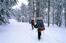 Genießen Sie einen Spaziergang auf Schneeschuhen durch die bezaubernde Winterwelt!
