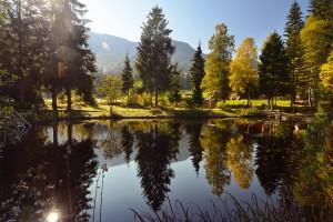Das Moorbad - Natürliche Heilung