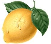 Die Zitrone als Vitamin C - Bombe