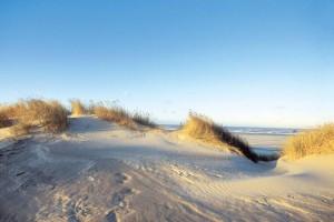 Reizklima inklusive - Blick über eine Düne auf die Nordsee