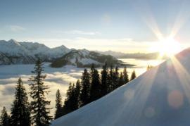 Wandern in der Wintersonne
