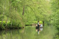 Eine Bootstour durch den Spreewald