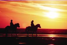 Auf dem Pferderücken in den Sonnenuntergang reite.