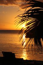 Fernweh nach Sonne, Strand und Meer.