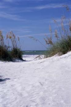 Eine frische Brise weht Ihnen um die Nase beim Wandern am Ostseestrand. Quelle: Wohlfühlhotel in Graal-Müritz, Ostsee - beauty24 GmbH