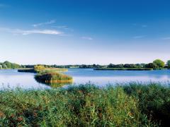 Die wunderschöne Natur der Lewitz - Bildhinweis: Wellness an der Lewitz / beauty24 GmbH