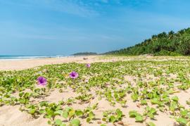 Urlaub in Sri Lanka - Bildhinweis: © Sri Budhasa Ayurveda Kurzentrum Paradise Island / beauty24 GmbH