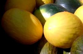 Pastasalat mit Melone - Bildhinweis: © beauty24 GmbH