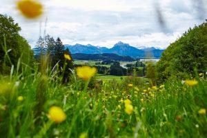 Das Gras an den Füßen spüren! Quelle: Wellness-Hotel in Hopfen am See - beauty24