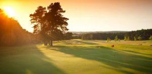 Hier können Sie entspannt ein paar Golfbälle schlagen. Quelle: Wellness im Naturpark Usedom Golfplatz; beauty24 GmbH